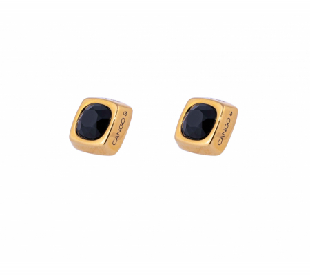 Cr Cube 10f Arany-fekete Fülbevaló